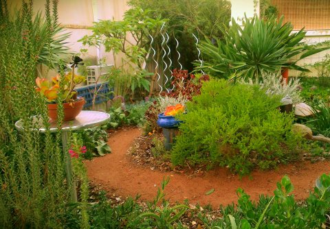 Artistic bird friendly garden design