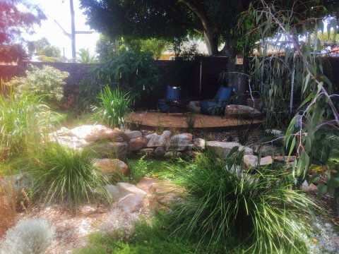 natural pond and deck in native garden Floreat