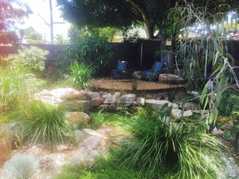 Native garden and pond Floreat Install Think Green