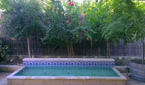 Moroccan courtyard with water feature