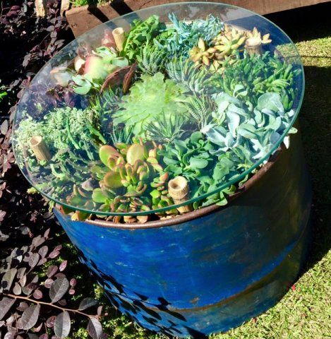 our quirky succulent table at Perth Garden Festival - some shade required in summer