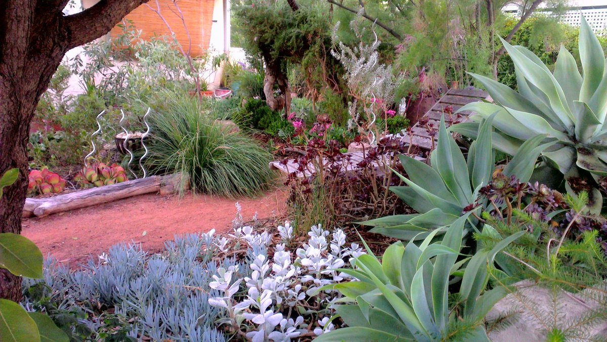 Landscape garden design front garden design for Native garden designs
